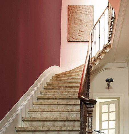Bourgogne Référence Cm59 Un Rouge Teinté De Violet Caractéristique