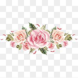 Flores Cor De Rosa Pintadas à Mão Pintados à Mão Aquarela