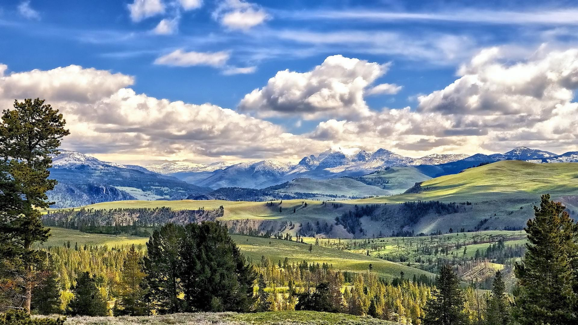 Yellowstone Picture For Free Hd Desktop Wallpaper Instagram Photo