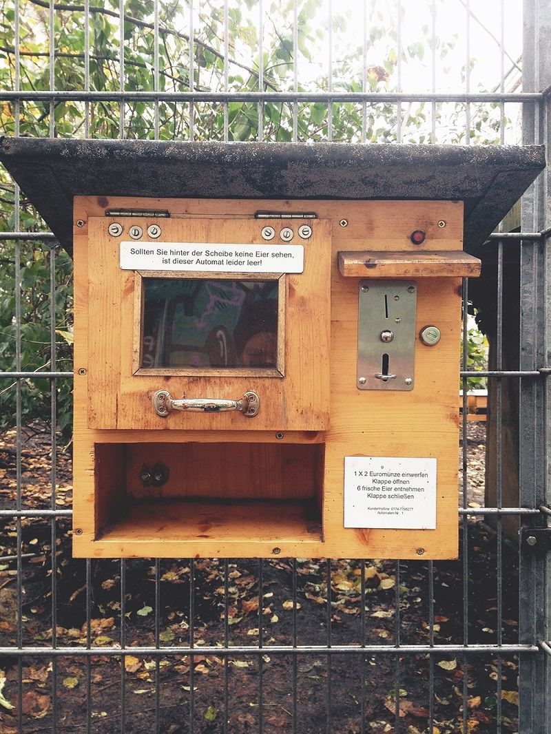 Huhnerhof Der Motte A 30 Year Old Urban Farm In Hamburg Has Come Up With An Effective Way To Sell I Chickens Backyard Backyard Chicken Farming Urban Chickens