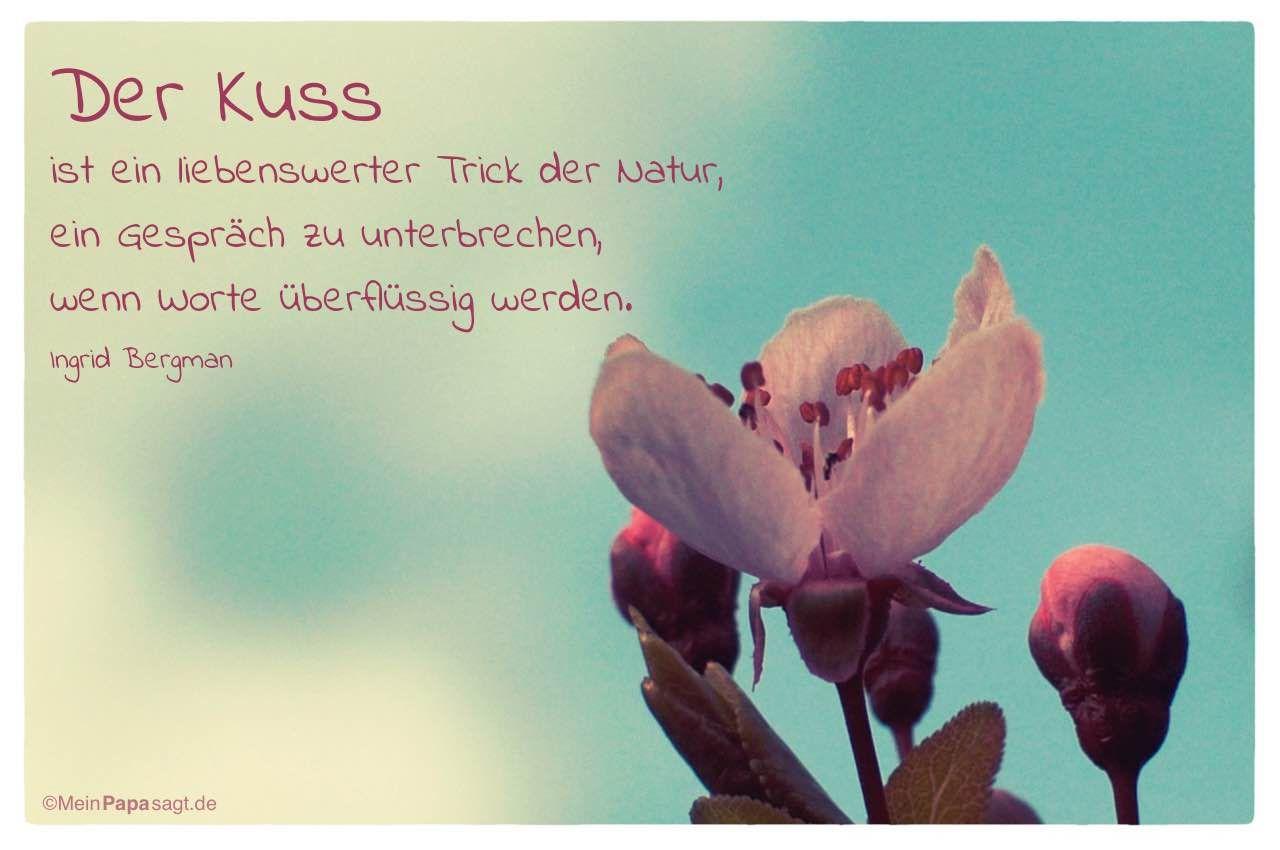 Der Kuss ist ein liebenswerter Trick der Natur, ein Gespräch zu
