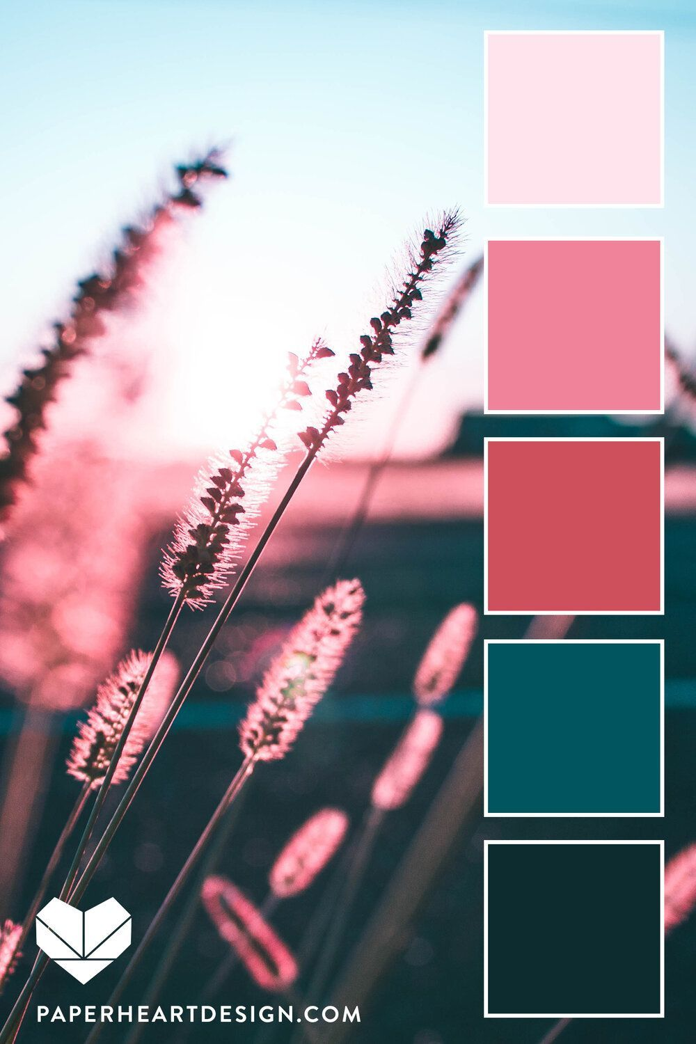 Magic Light Color Palette, Pink and Teal Sunset