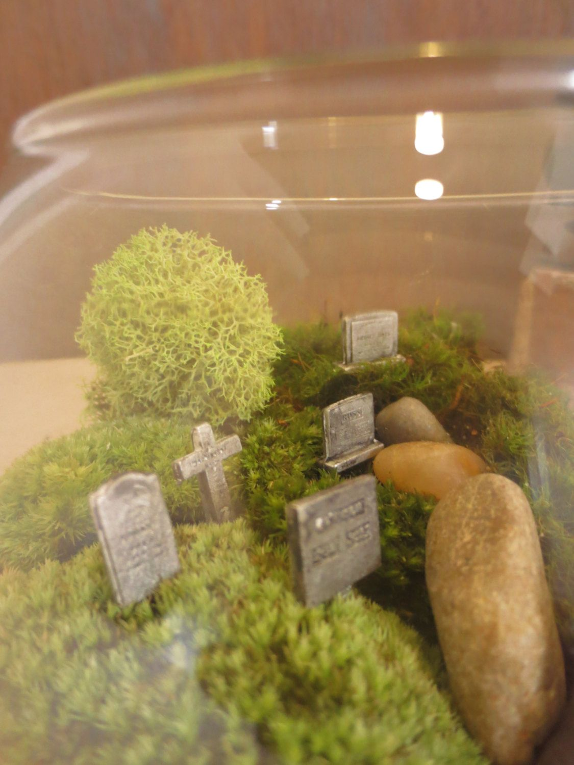 I Ll Also Have A Miniature Graveyard In My Terrarium Hold Your