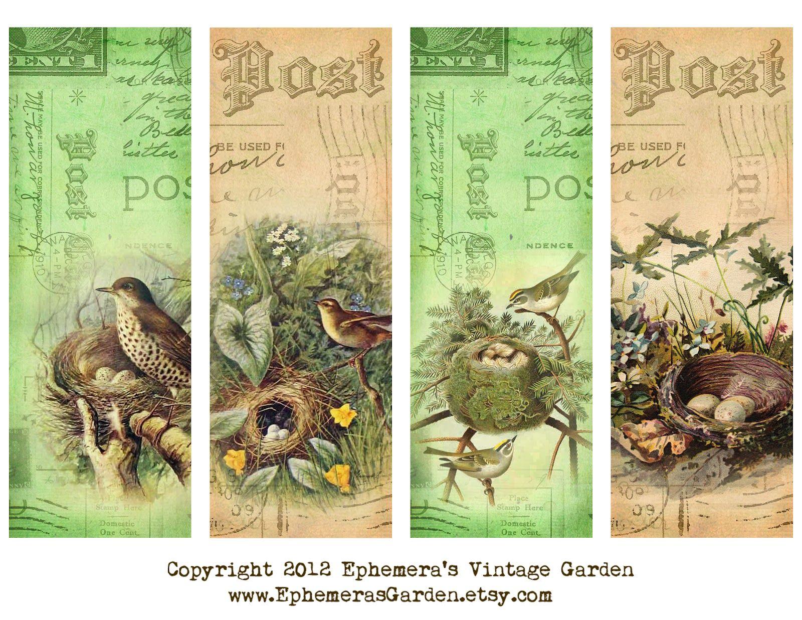 Free Printable Bird Nest Bookmarks