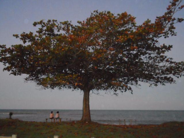 Praia do Mar Azul, Aracruz (ES)