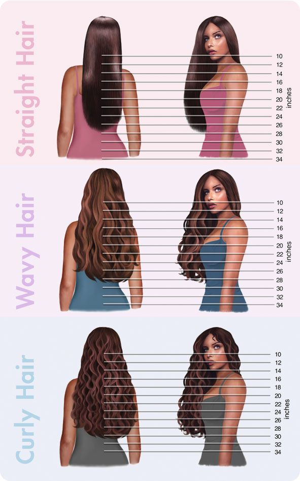 Hair length chart more also frequently asked questions nails beauty health rh pinterest