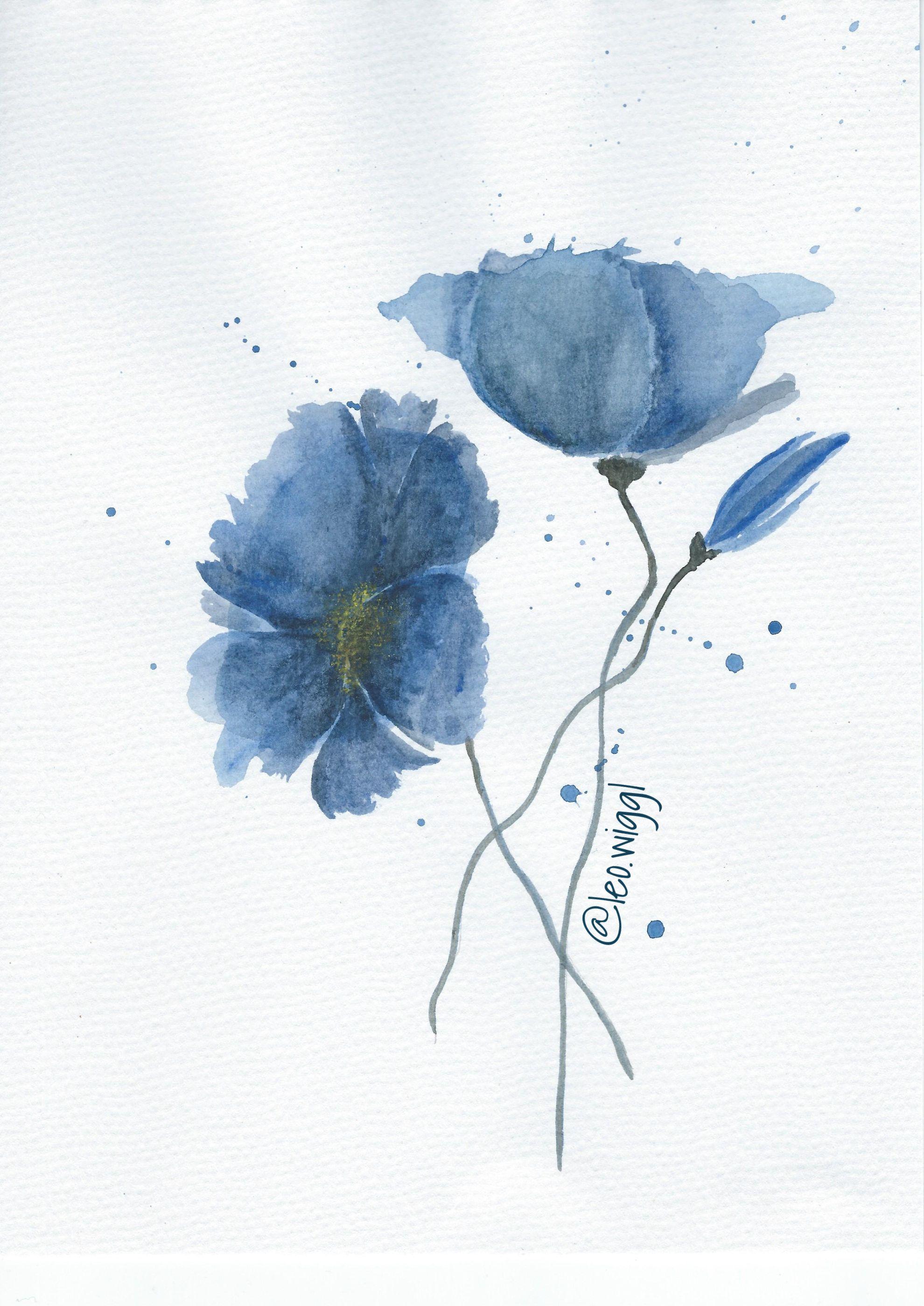 Mohn Poppy Blau Aquarell Blumen Flowers Watercolor And Ink