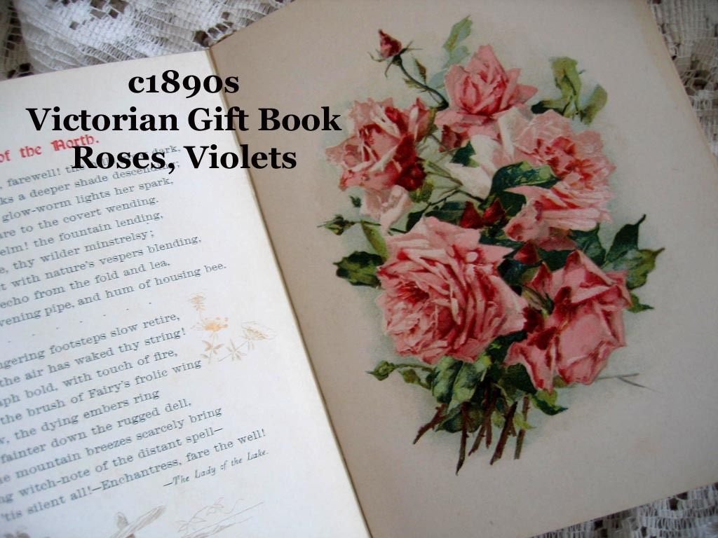 c1890s Poetry Flowers Book Diamonds From Scott Catherine Klein Color ...