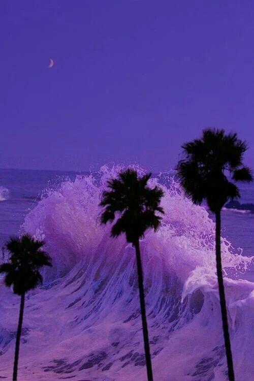 PURPLE AESTHETIC /// neon aesthetic / purple aesthetic ...