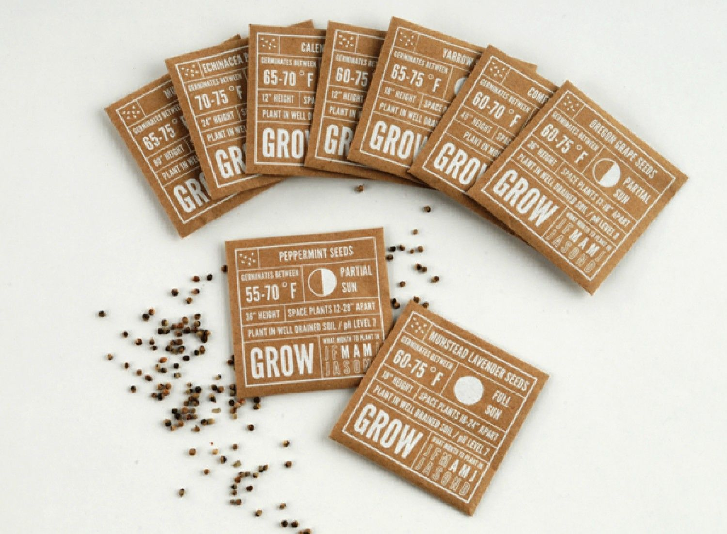 Seed Packet Labels Infographic Package Design Pinterest Jazz1 Sachet