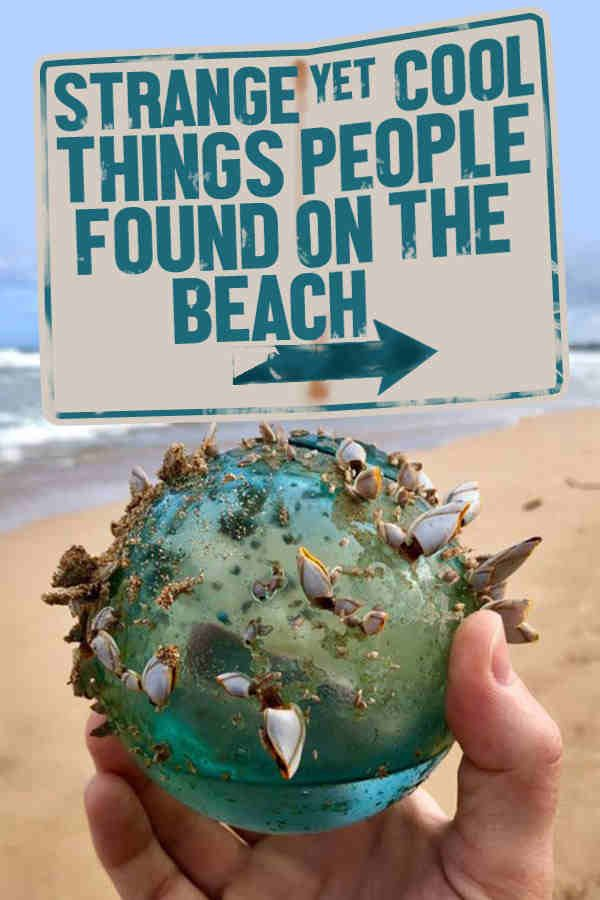 Rarest Things Ever Found On The Beach Cool Pinterest Stuff And Sea