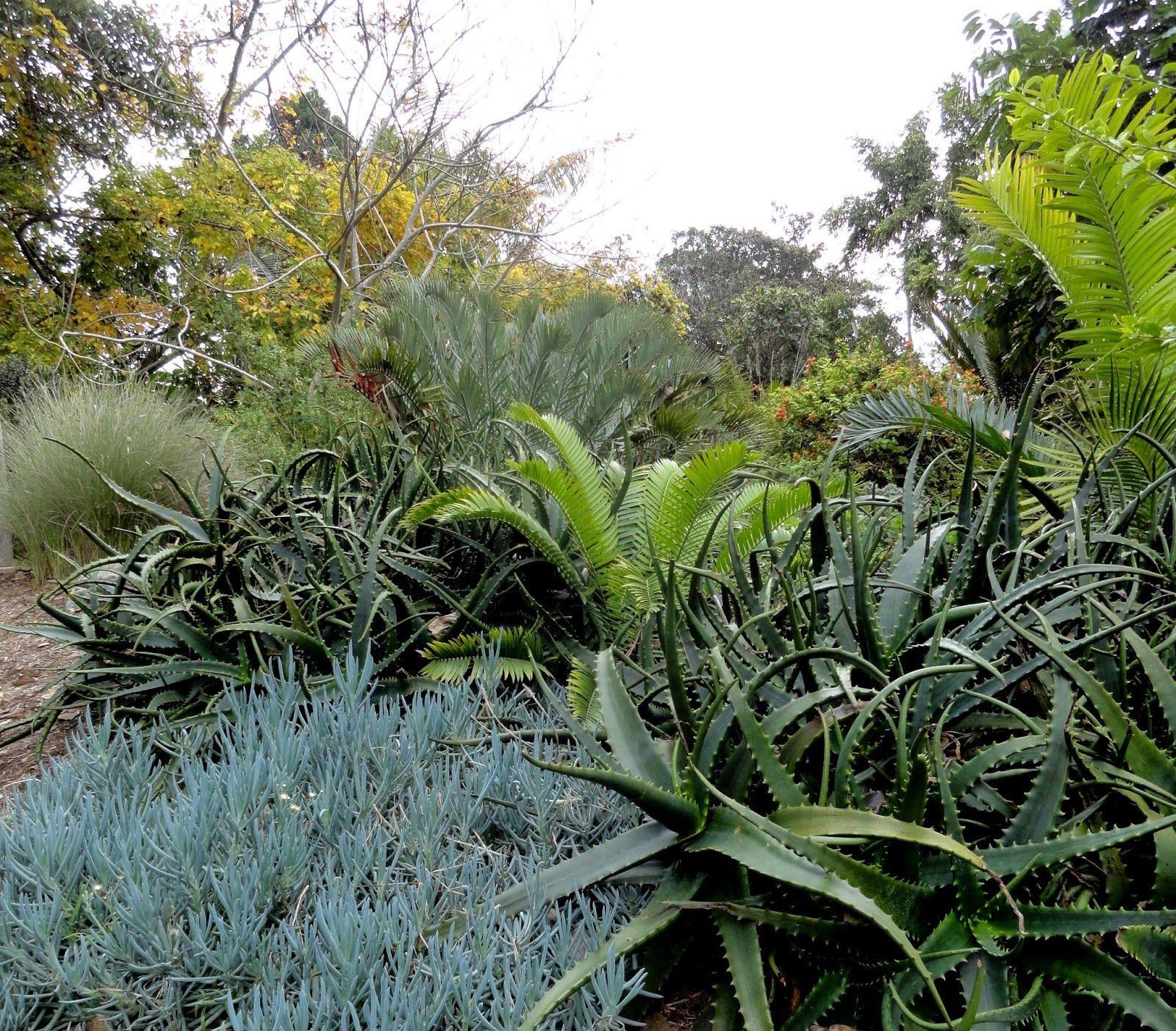 f82876f1d84180cbdba05579cc9a8128 - San Diego Botanical Gardens Free Tuesday
