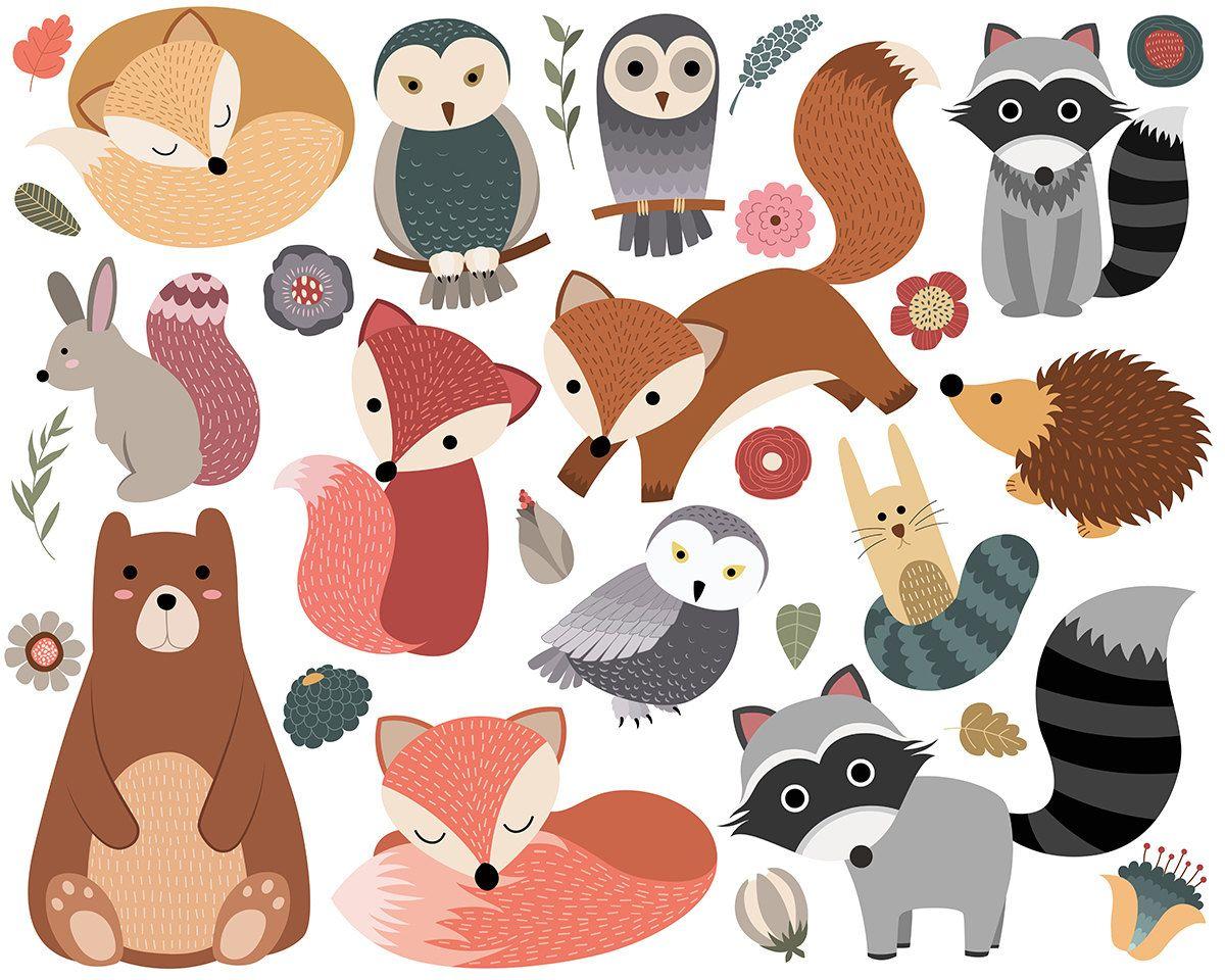 Woodland Critters Clip Art Set of 30 300 DPI PNG, JPG