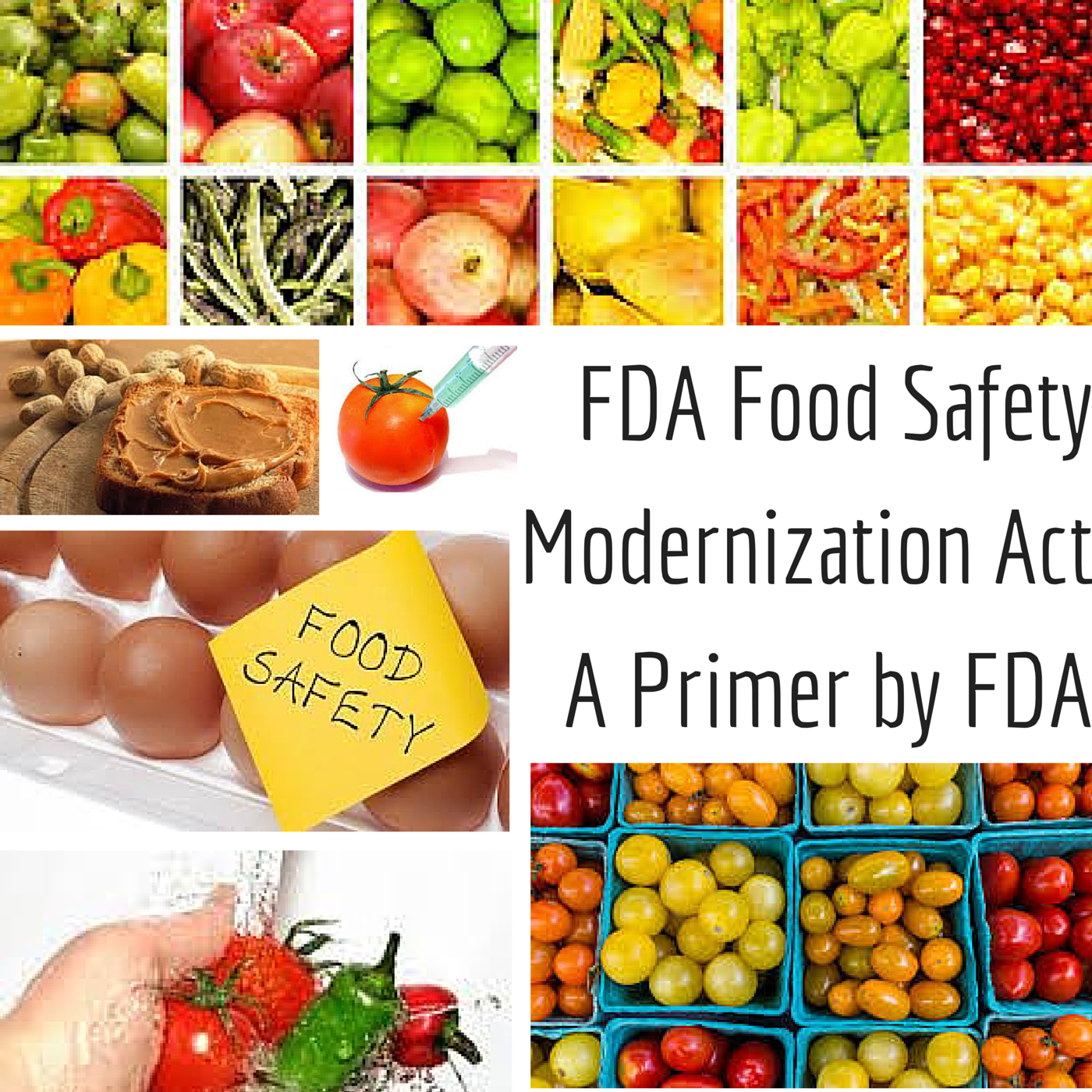 Fda Foodsafety Modernization Act A Primer By Fda It Is Highly Important For Food Exporters Importers And Producers With Images Food Safety Regulatory Compliance Food