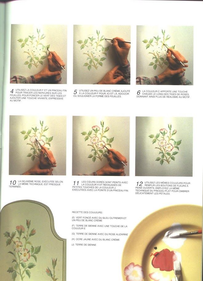Roses anglaises a peindre soi-meme - Maica Dos - Álbumes web de Picasa