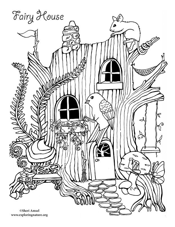 Fairy House Drawing Google Search Bird Coloring Pages Fairy Coloring Pages House Colouring Pages