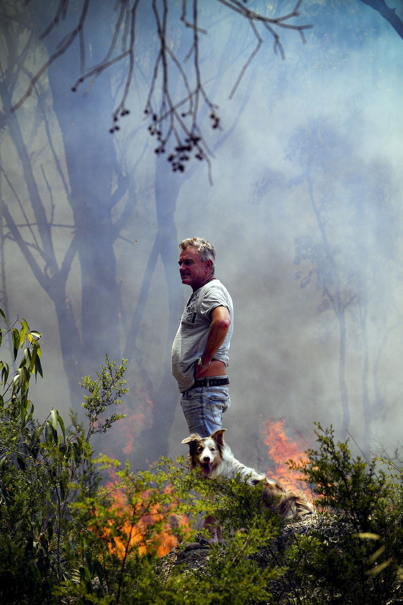 8 things everyone should know about Australia's wildfire