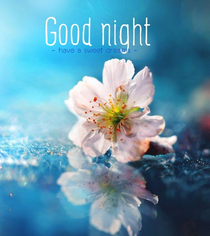 Good Night Sweet Dreams Beautiful Good Night Images Good Night Sweet Dreams Good Night Blessings Sweet dreams good night images hd 1080p