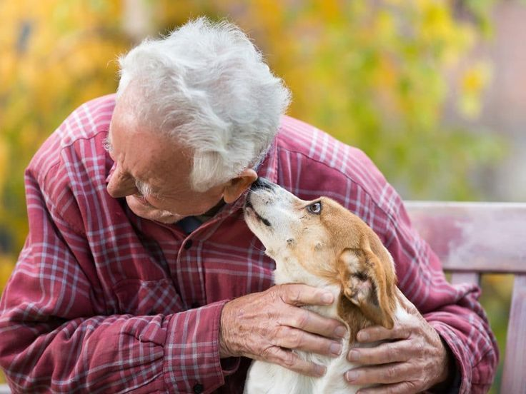 Pets Help Older Adults Cope with Life Issues | Older ...