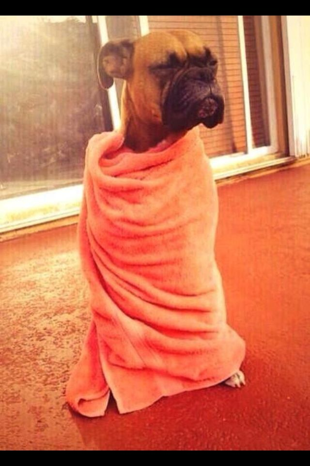 When you wake up from a nap and you're looking for food