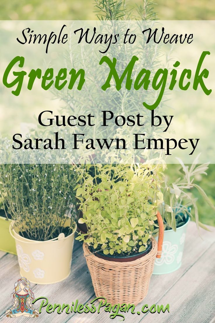 Simple Ways to Weave Green Magick in an Apartment (Guest Post by Sarah Fawn Empey) #greenwitchcraft