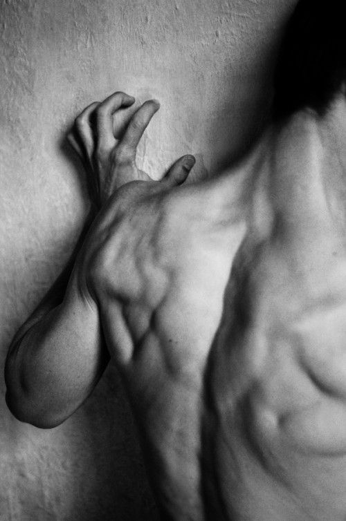Male nude muscles body black and white detail art photography the human form black white author unknown photography