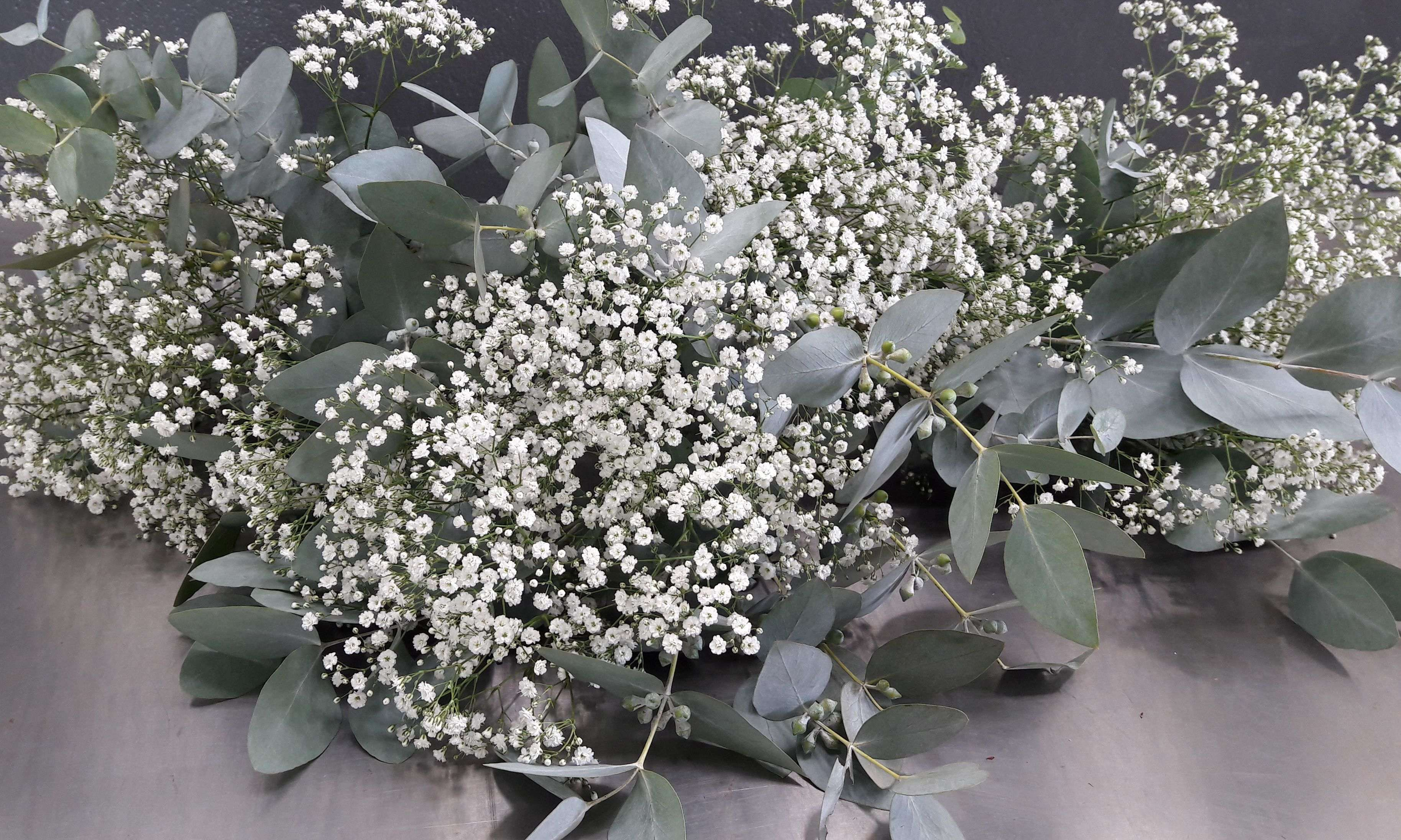 Baby S Breath And Penny Gum Make The Perfect Bridesmaids Bouquets If You Re Looking For Flowers That Are Babys Breath Wedding Bridesmaid Bouquet Forest Wedding