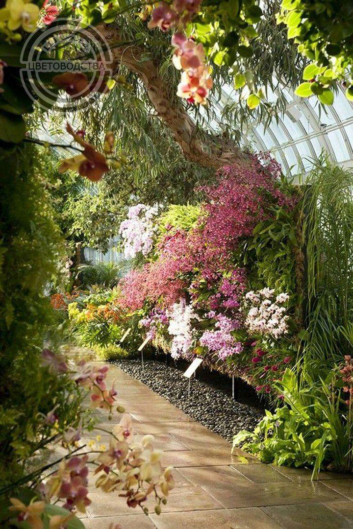 Картинки вертикальные сады
