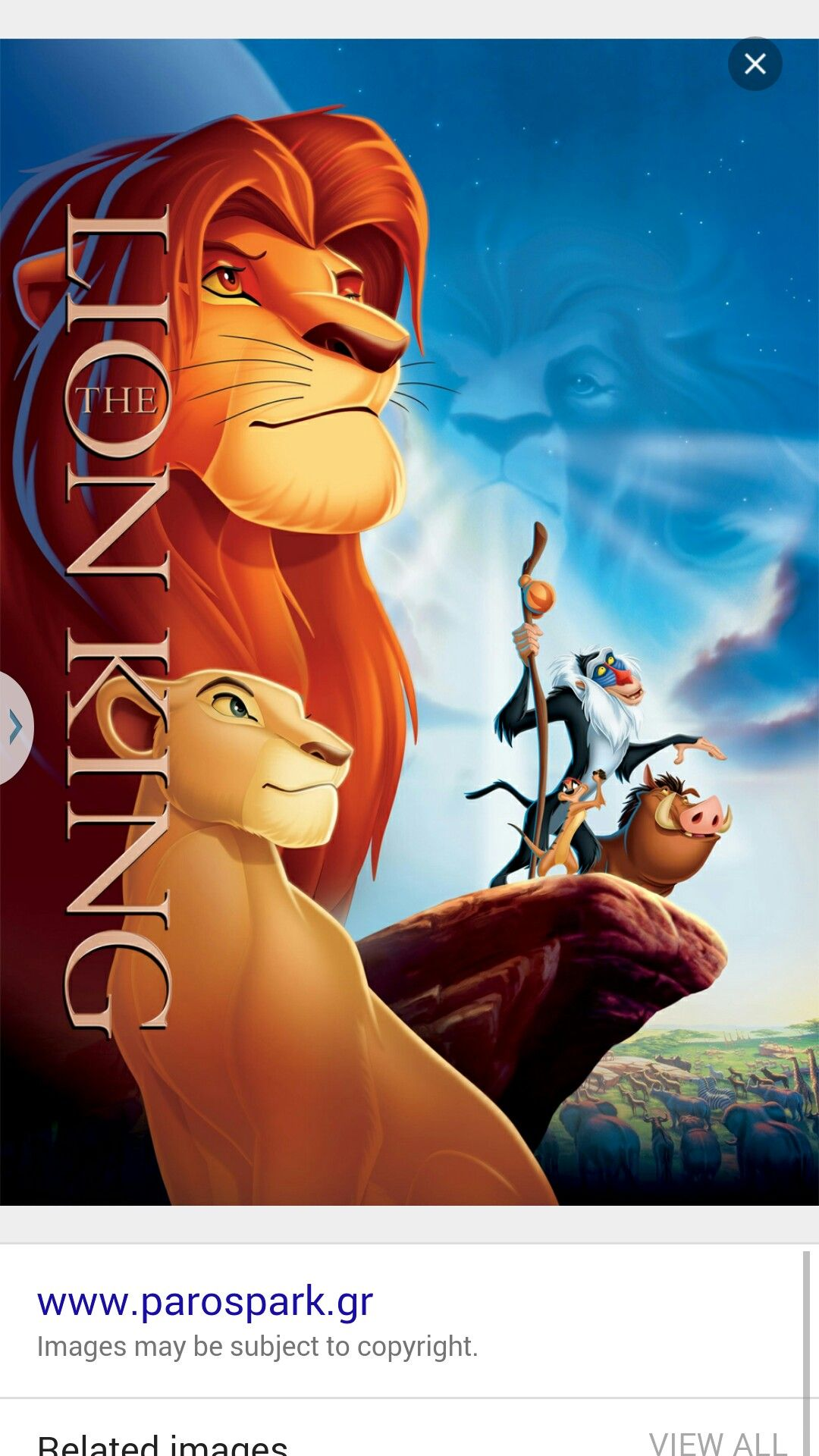 Lion king movie by photography 2016 2017 on lion of the