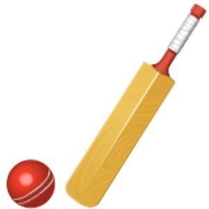 Image Result For Cricket Bat Cricket Bat Card Making Bat