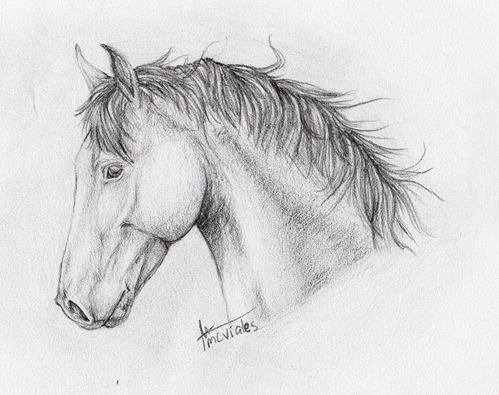 Resultado de imagen para pintura de ojos de caballo  Caballos