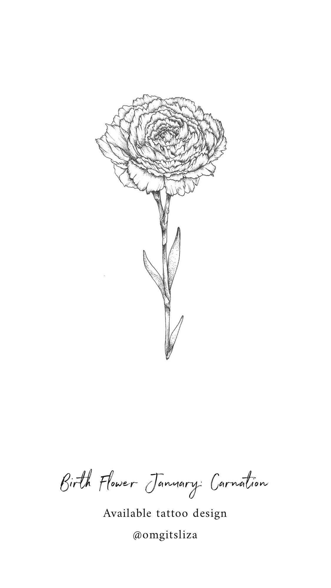 Birth Flower January Carnation Tattoo Design Illustration By