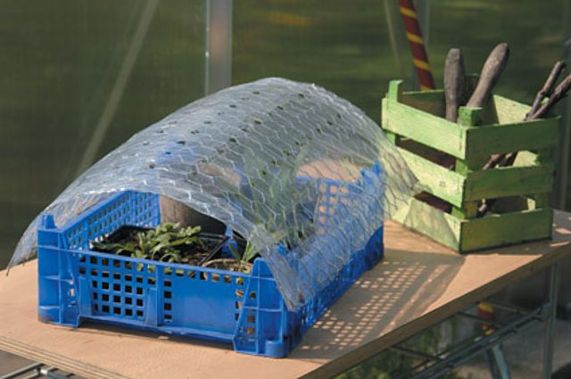 Mini-Gewächshaus schnell gebaut: Wir fangen alle mal klein an: Frisch ausgesäte Pflanzen brauchen einen besonderen Schutz. Plastikfolie über der Aussaat verhindert, dass die Erde zu schnell austrocknet und sorgt gleichzeitig dafür, dass die Feuchtigkeit konstant bleibt.