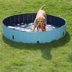 Large Dog Paddling Pool With Cover Durable Outdoor Doggy Swimming Hydrotherapy Dog Pool Dog Swimming Pools Dog Swimming