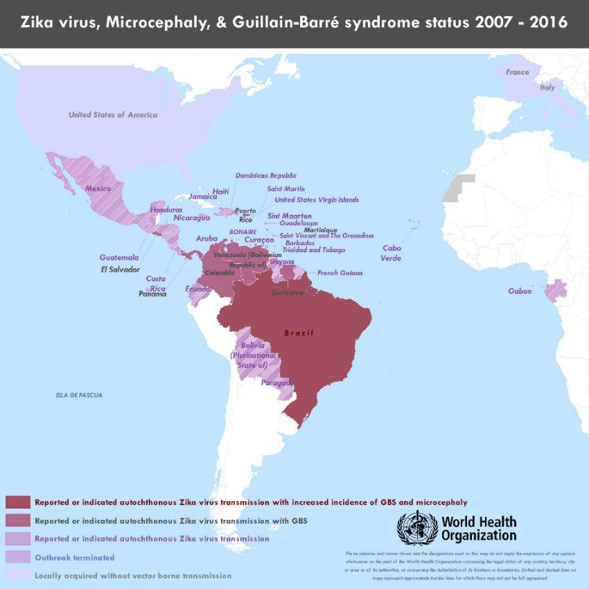 Who  Zika Situation Report  CaraibeCaribbean