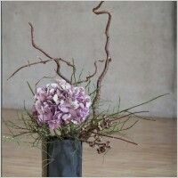 Ikebana flower beauty
