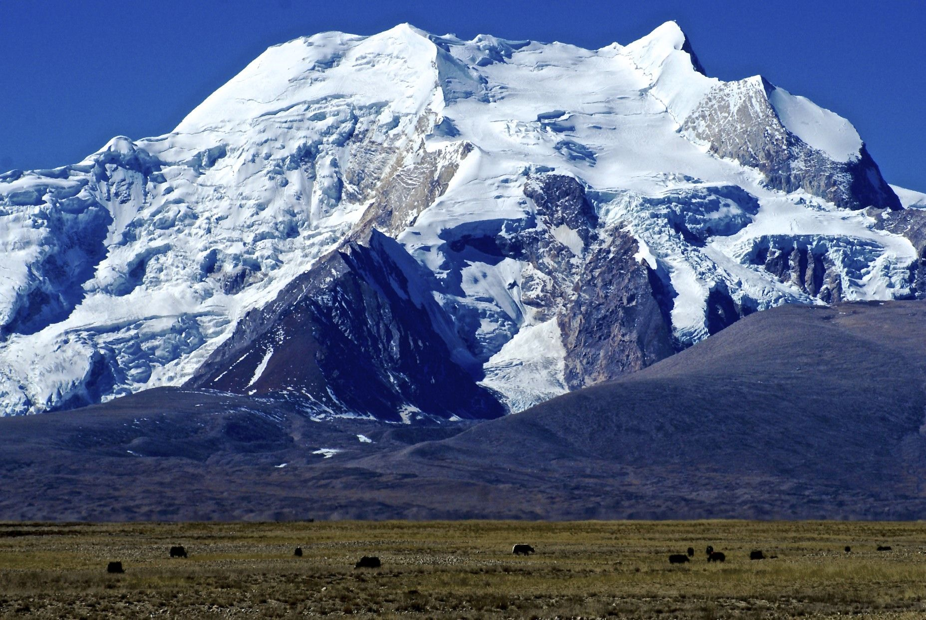 himalayan mountains pictures | ... , rising to 7295 meters in the ...