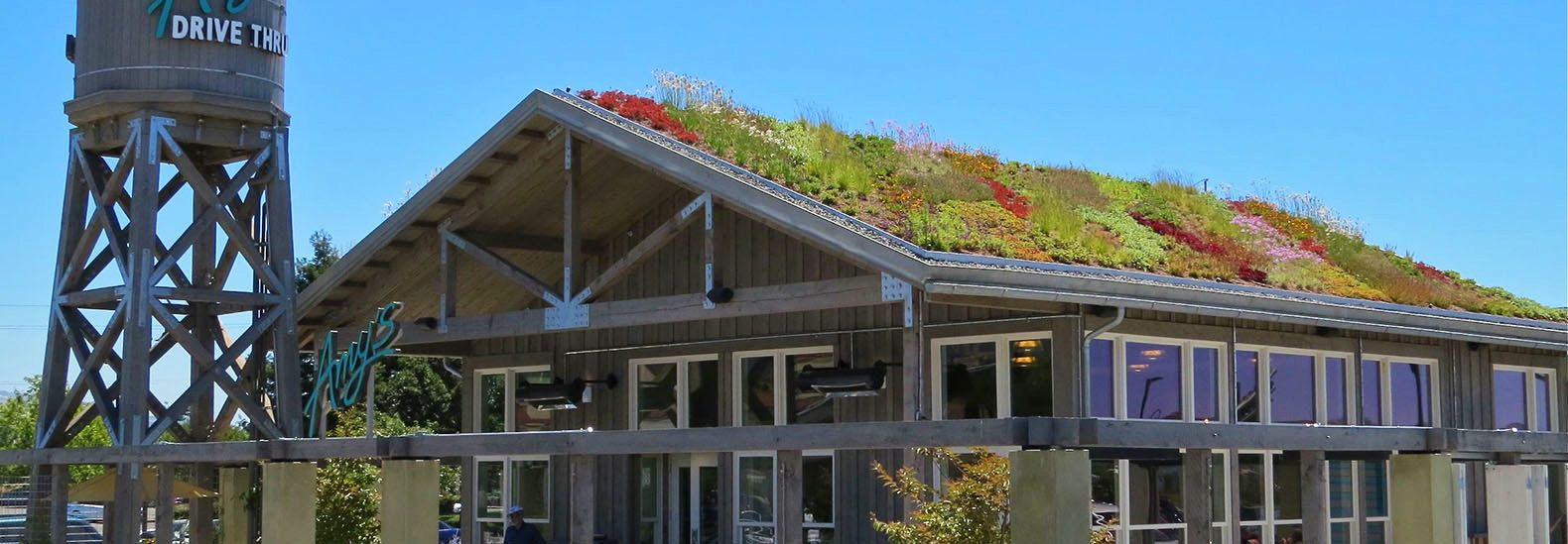 Gorgeous Living Roof Tops Amy S Kitchen Drive Thru Near San Francisco Living Roofs San Francisco Restaurants Green Roof