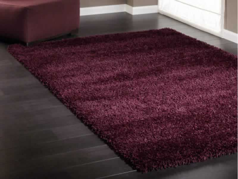 Explore Plum Rug Pop Of Color And More