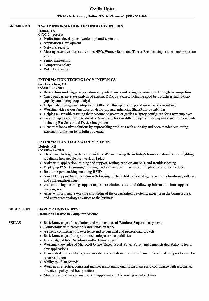 Information Technology Manager Resume Examples New Information Technology Intern Resume Samples Resume Examples Manager Resume Resume