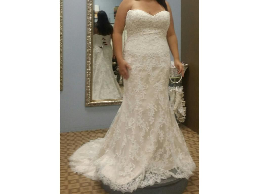 We make all types of custom weddingdresses for brides of all sizes