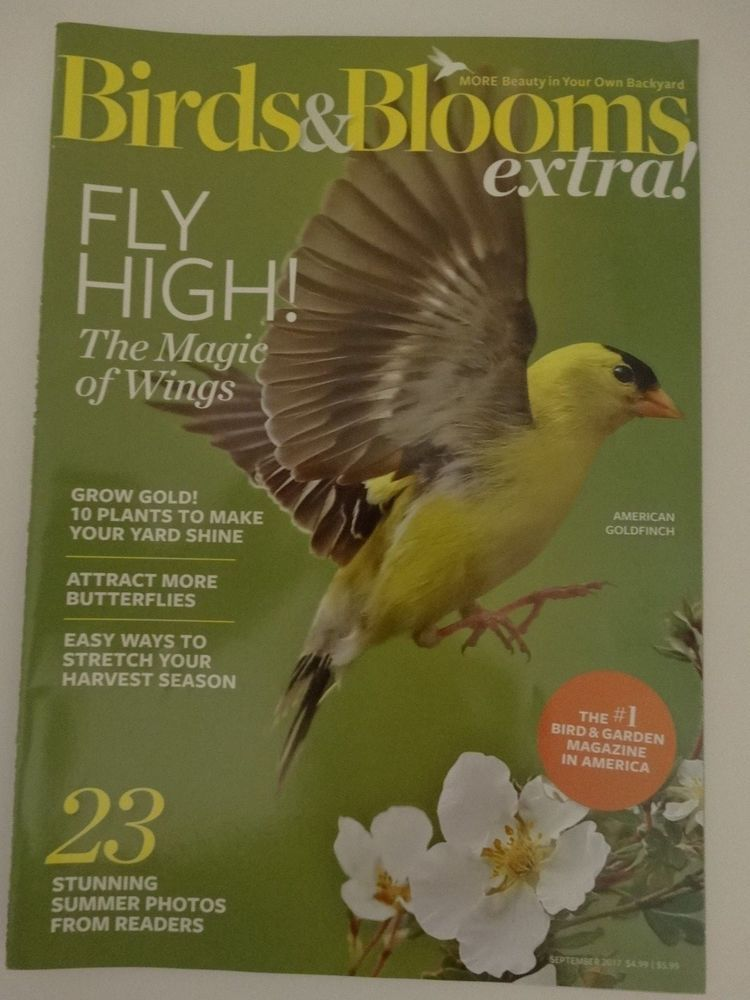 Birds And Blooms Extra American Goldfinch September 2017