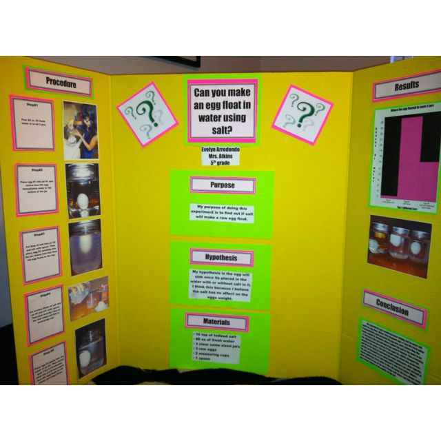 science fair projects for girls Google science fair is a global online competition open to students from 13 to 18 years old what do you want to change.