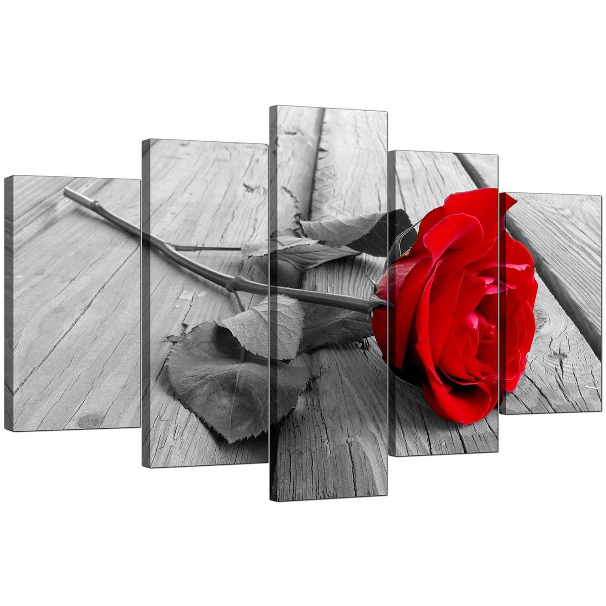 Extra large red rose canvas art set of five in black u white
