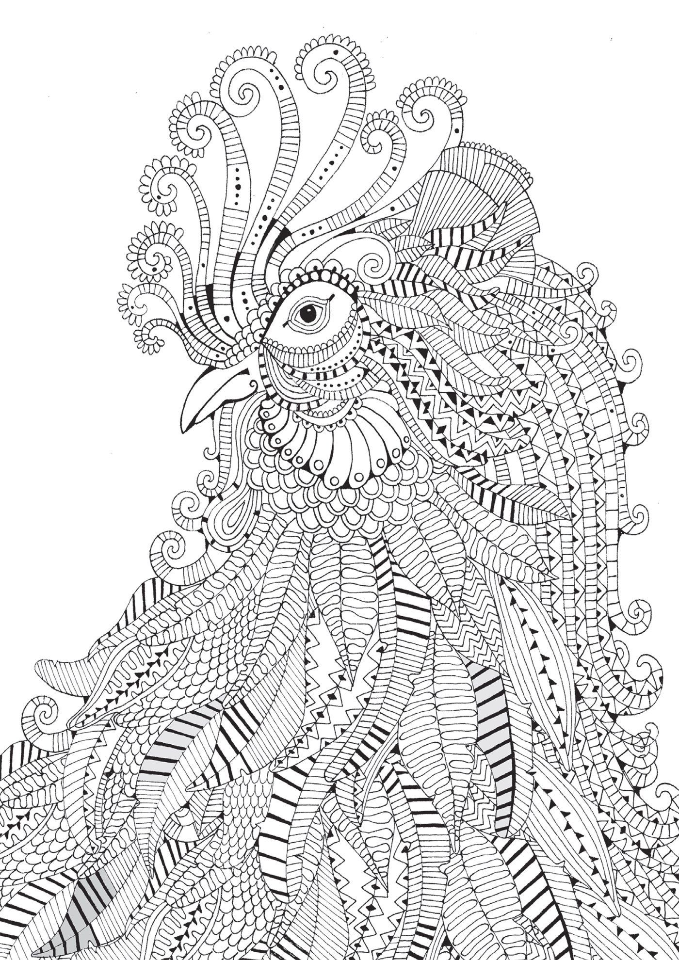 coloring pages rooster 3 u2026 pinteres u2026