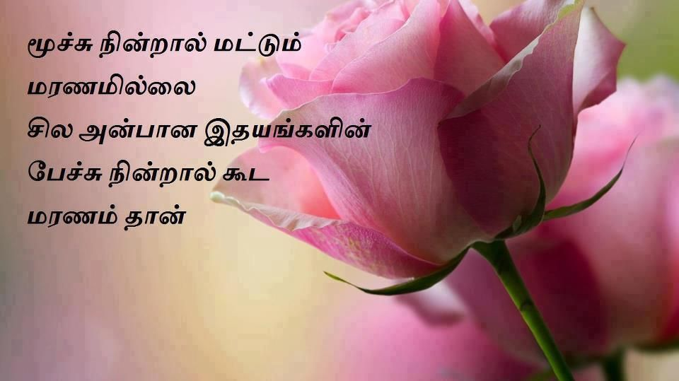 kavithai in tamil about mother - Google Search | Tamil Kavithaigal ...