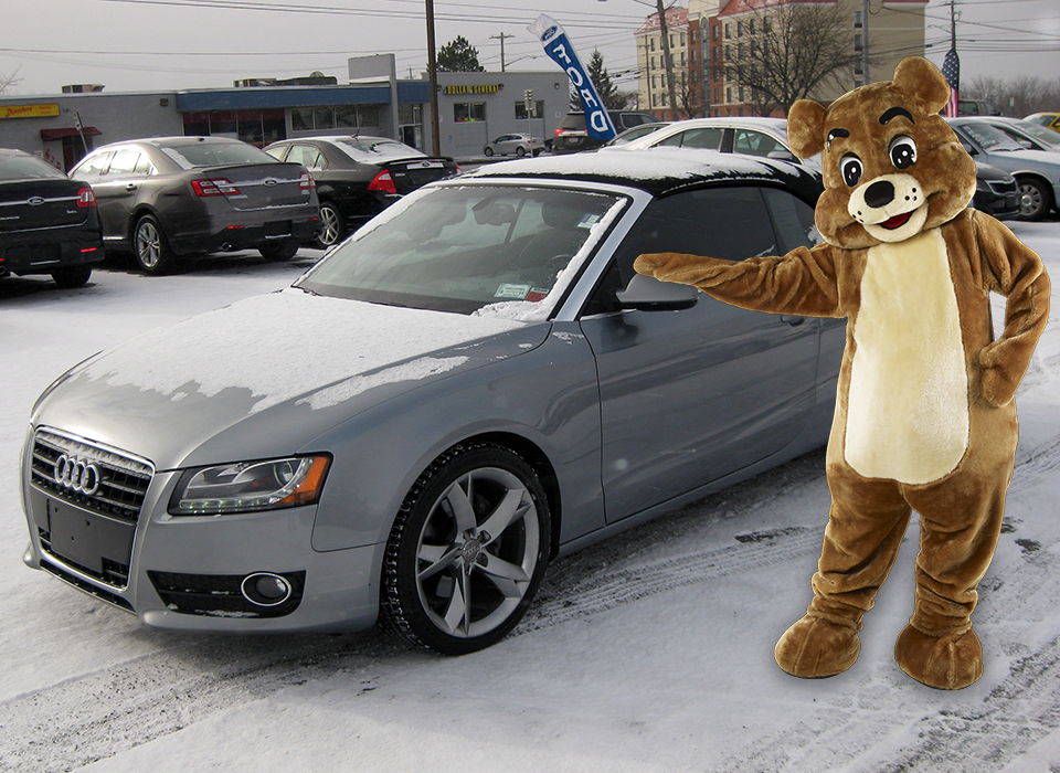 attention all bears why hibernate let the wind rip through your fur this winter in this 2011 audi a5 premium plus convert new tyres used cars used car dealer pinterest