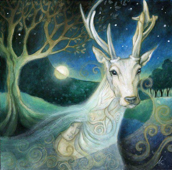 Poster Art belle Giclee stampa Wall Art ORIGINALE ACQUERELLO OPERA D/'ARTE Hare Arte