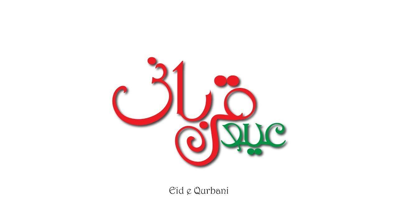 Modern Arabic / Urdu Calligraphy in illustrator using English Font