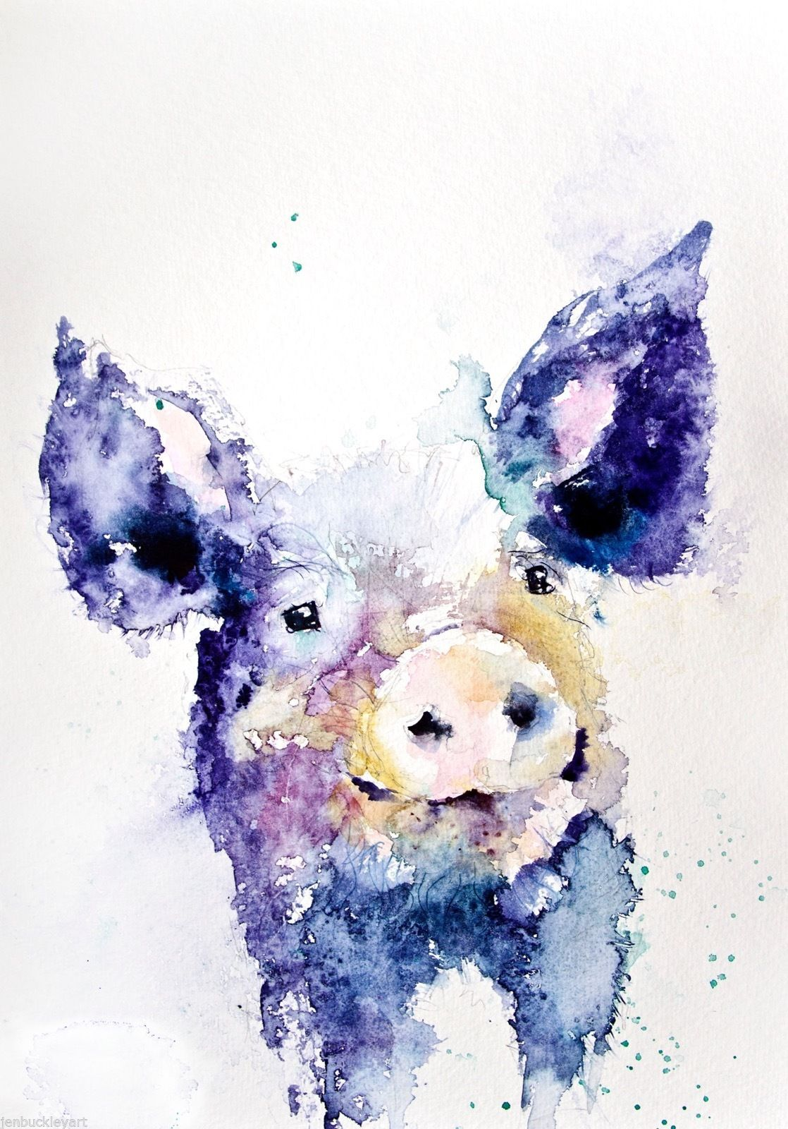 Jen Buckley Contemporary Hairy Pig Watercolour Painting Large A3